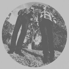 Segall Ty and White Fence : Hair (Vinyl) (General)
