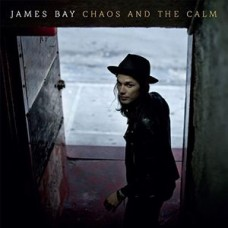 Bay James : Chaos and the Calm (Vinyl) (General)