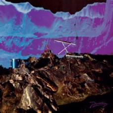 Late Of The Pier : Fantasy Black Channel (Standard 10y Anni (Vinyl) (General)