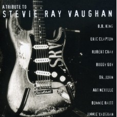Various Artists : Tribute To Stevie Ray Vaughan (CD) (Blues)