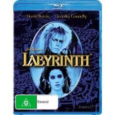 Labyrinth : Movie (DVD) (Movies)