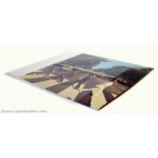 Record Outer Sleeve Thin Floppy : Record Outer Pvc Lp Sleeve (Vinyl Accessories) (Accessories)