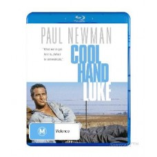 Cool Hand Luke (1967) : Movie (DVD) (DVD)