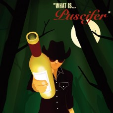 What Is... : Puscifer (DVD) (General)