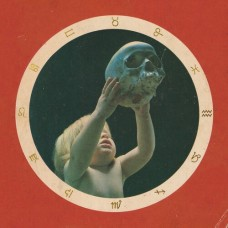 State Faults : Clairvoyant (Vinyl) (Punk)