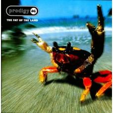 Prodigy : Fat of the Land (2LP) (Vinyl) (Breaks)
