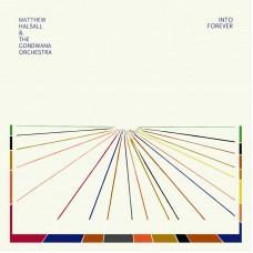 Halsall Matthew and The Gondwana Orchestra : Into Forever (Vinyl) (Jazz)