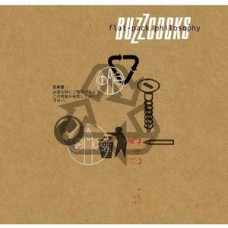 Buzzcocks : Flat-Pack Philosophy (Vinyl) (Punk)