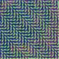 Animal Collective : Merriweather Post Pavillion (CD) (General)