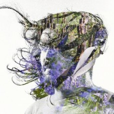 Bibio : Ribbons (2LP//Purple//Dld) (Vinyl) (General)