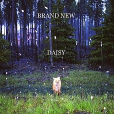 Brand New : Daisy (Vinyl) (Punk)