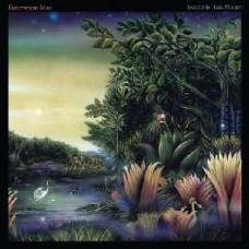 Fleetwood Mac : Tango In The Night (Clrd) (Vinyl) (General)