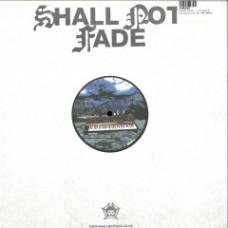 "Felipe Gordon : Bacatá Extrapolation (12 Vinyl) (House)"""