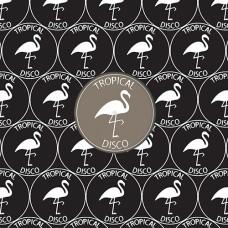 """Various Artists : Tropical Disco Records, Vol. 20 (12 Vinyl) (Nu Disco)"""""""